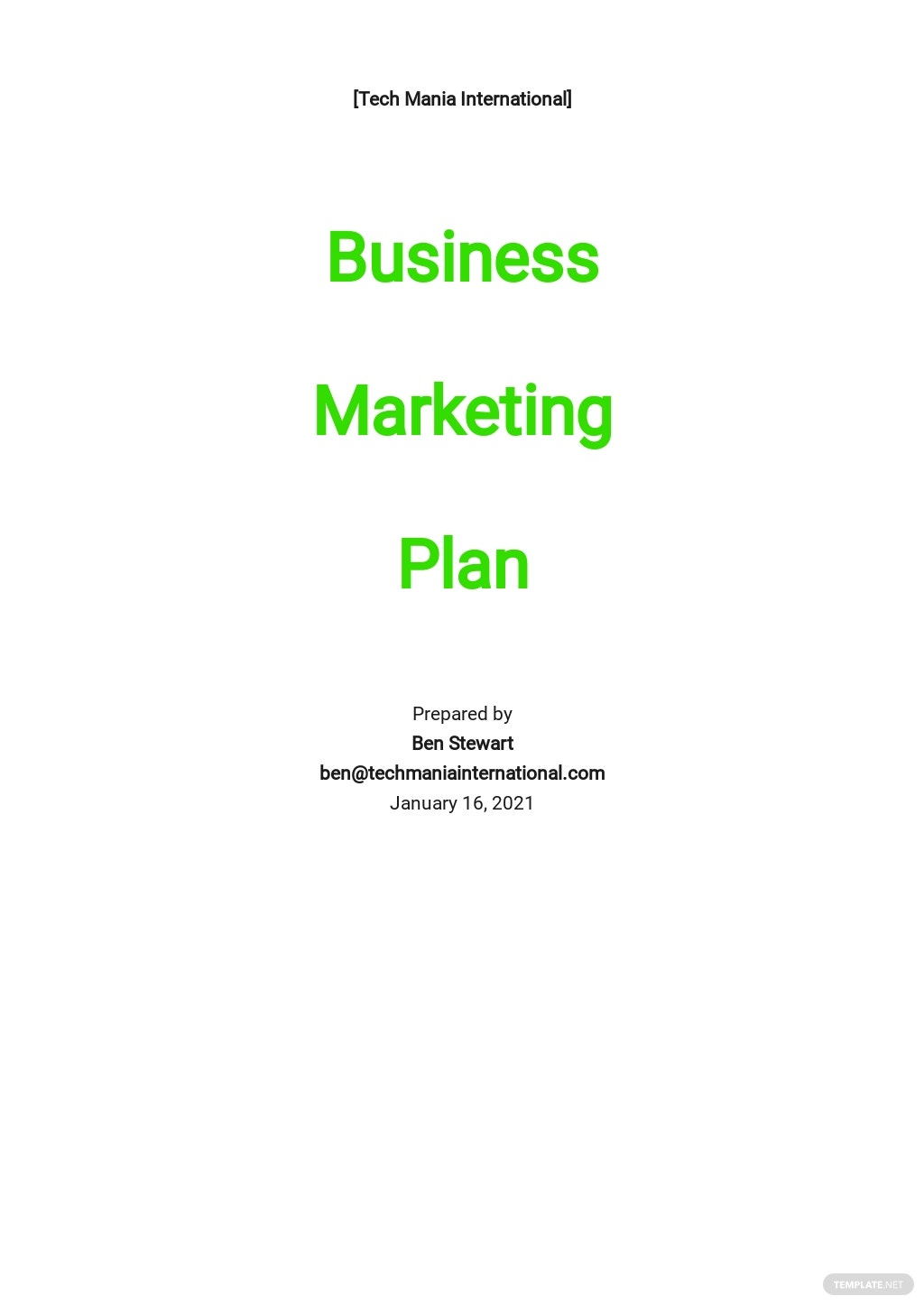 IT Business Marketing Plan Template