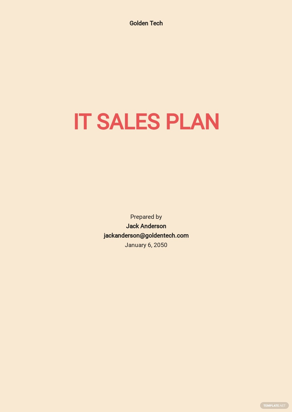 Free Sample IT Sales Plan Template