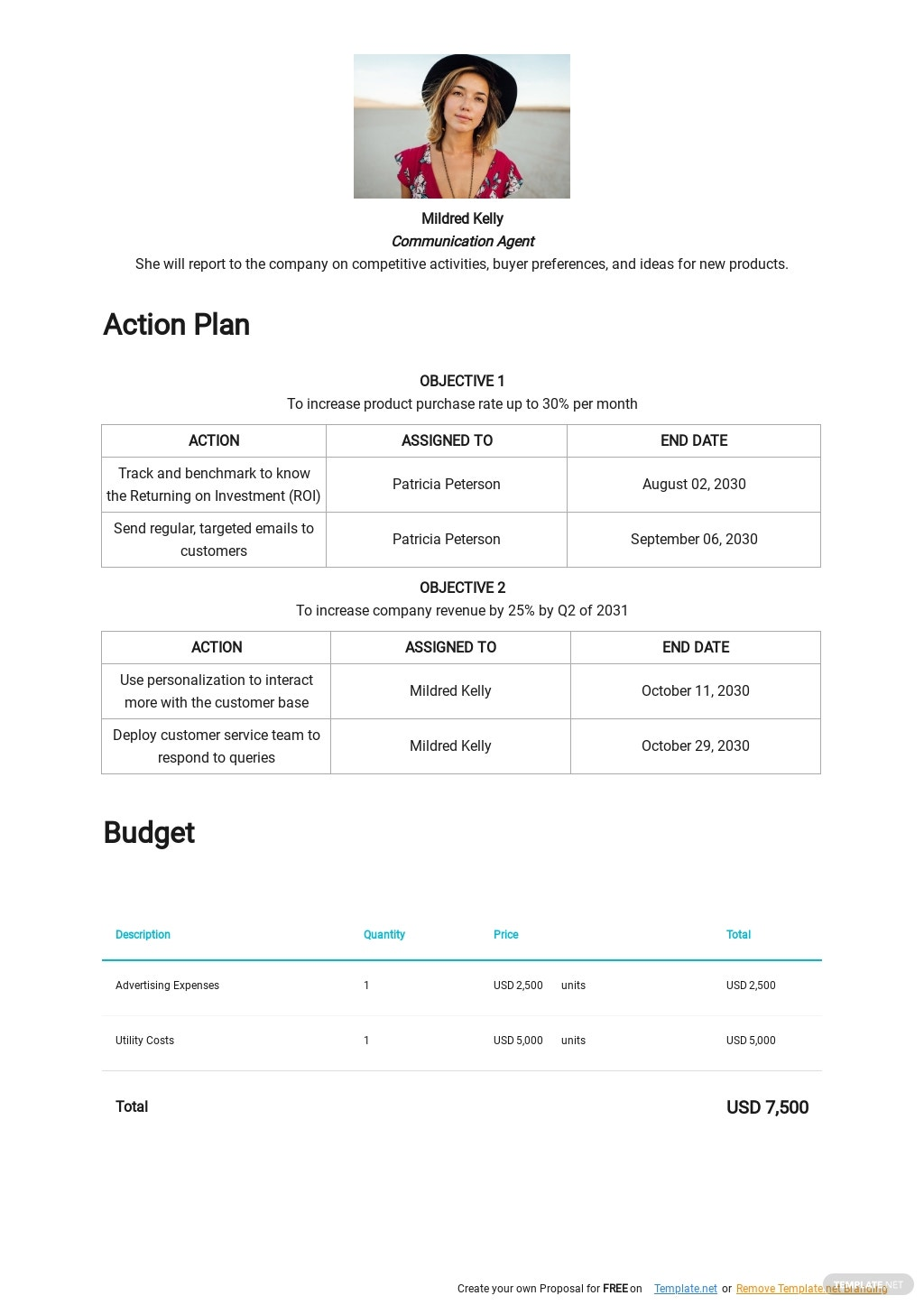 Sample IT Sales Plan Template 2.jpe