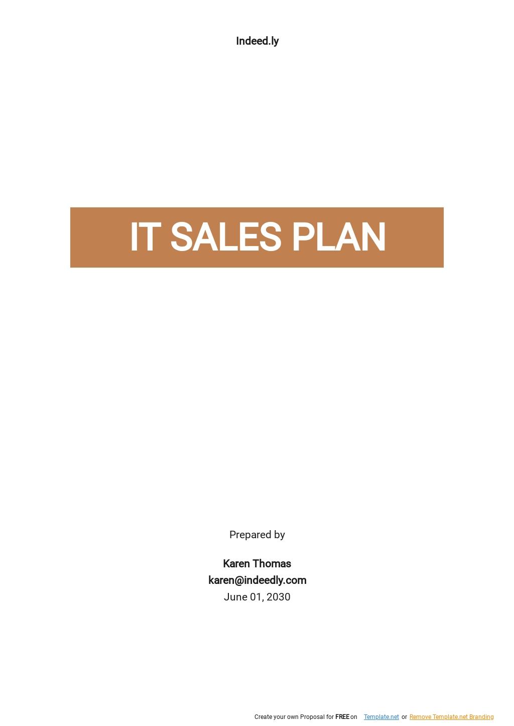 Sample IT Sales Plan Template.jpe