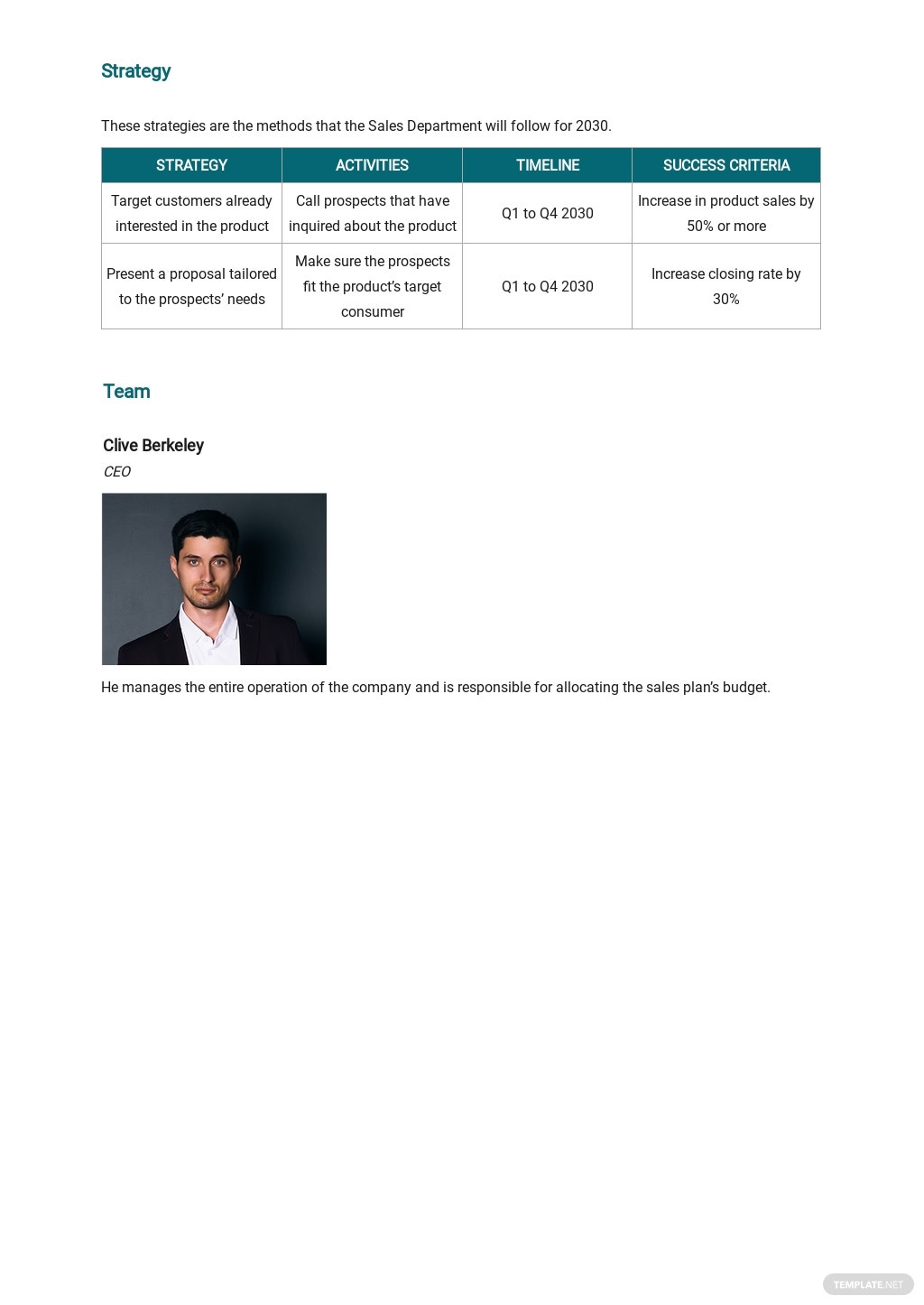 Free Simple Software Sales Plan Template 2.jpe