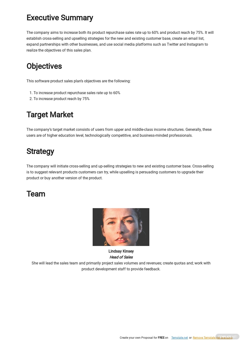 Software Product Sales Plan Template 1.jpe