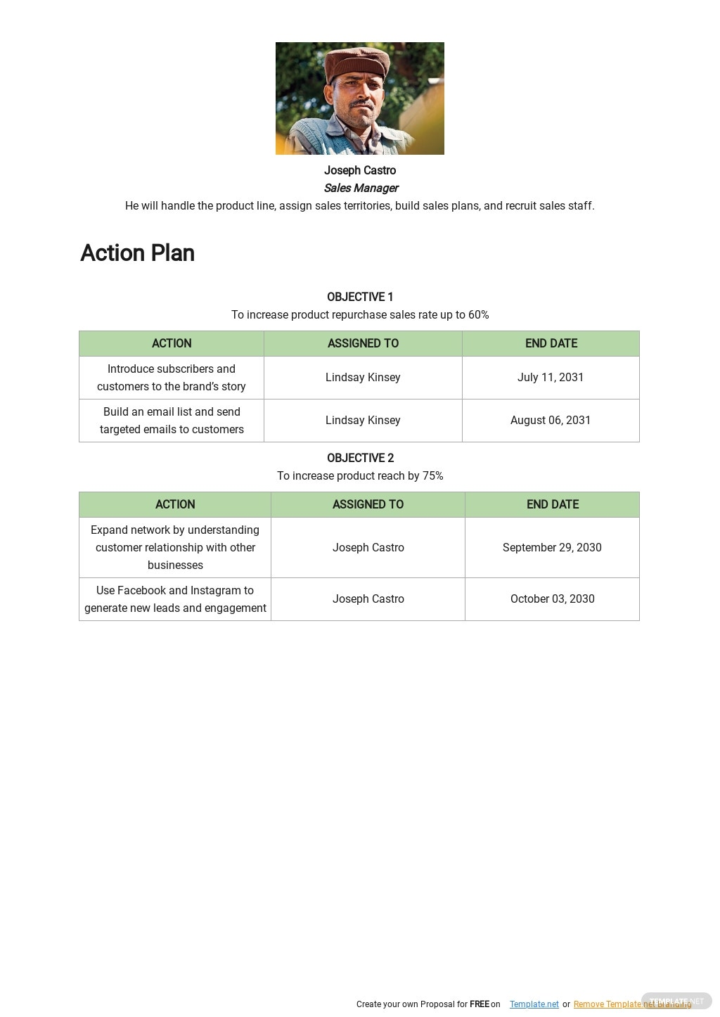 Software Product Sales Plan Template 2.jpe