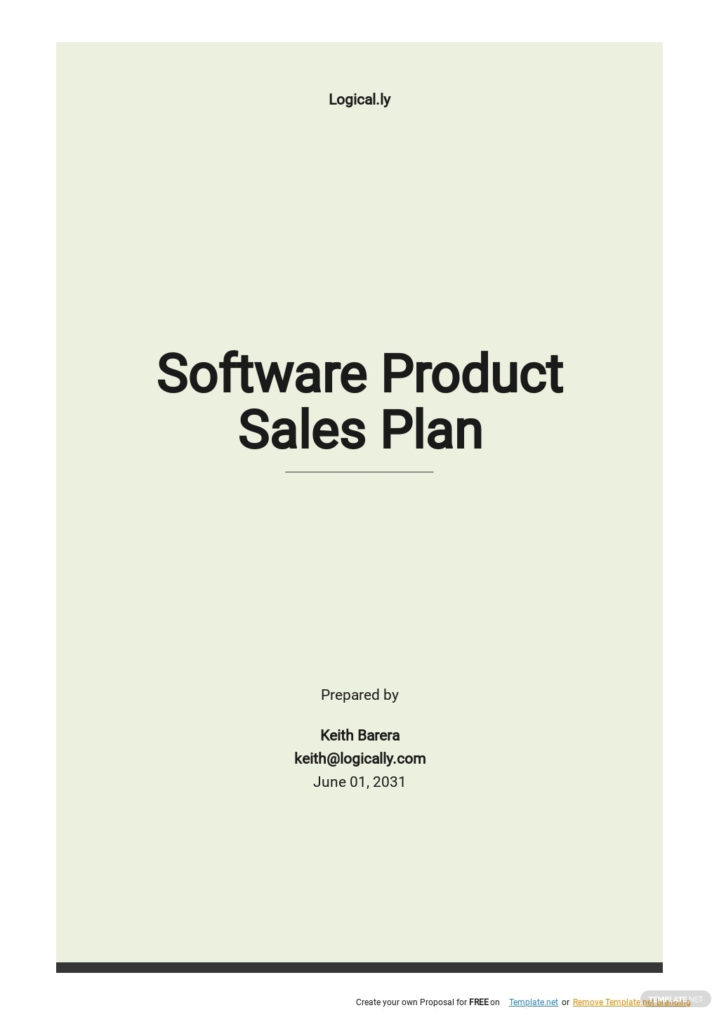 Software Product Sales Plan Template.jpe