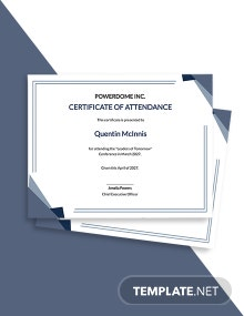Free Conference Attendance Certificate Template