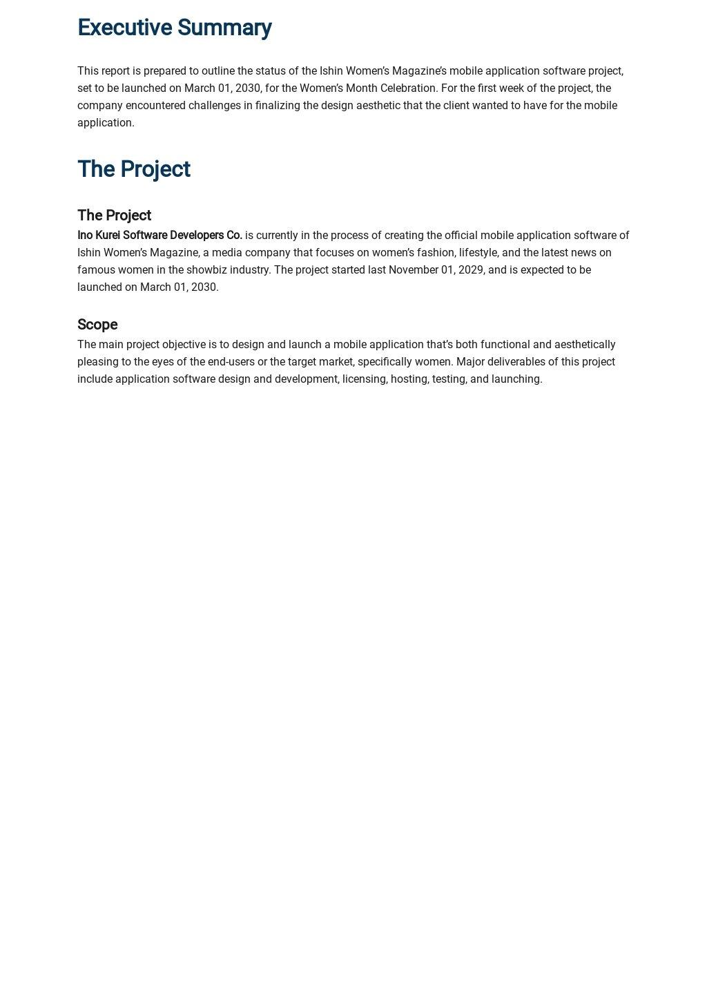 Software Development Progress Report Template 1.jpe