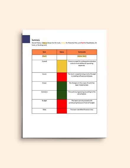 Software Development Progress Report Template