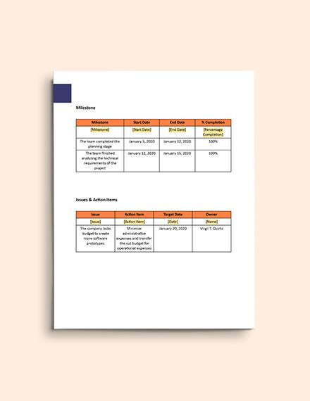 Software Development Progress Report format
