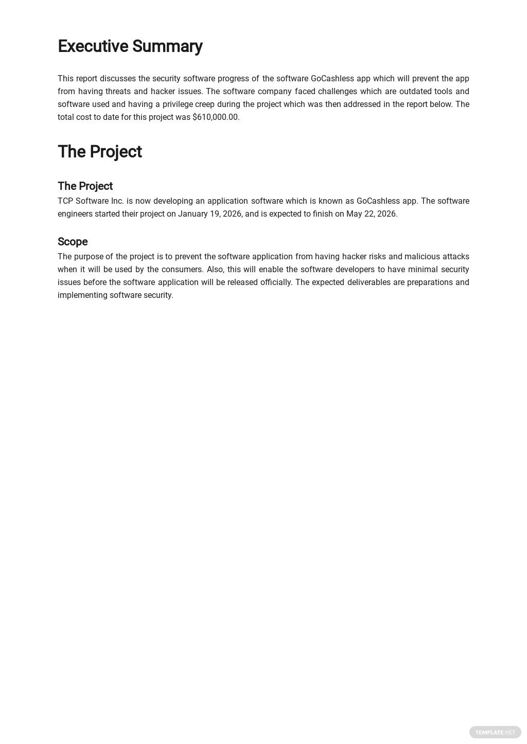 Software Security Report Template 1.jpe