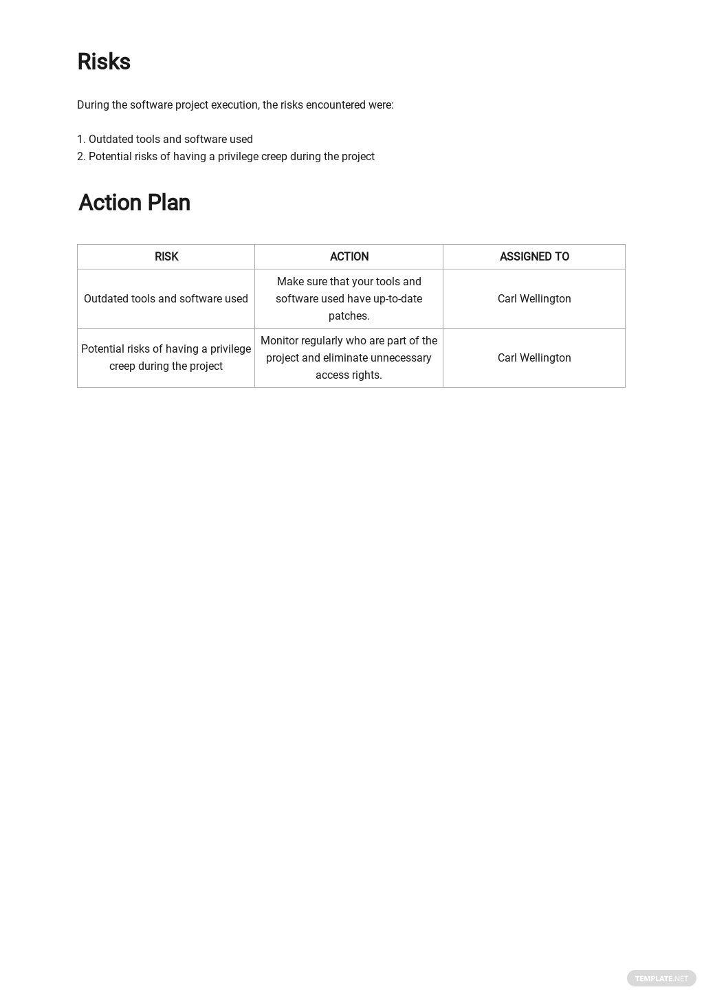 Software Security Report Template 3.jpe