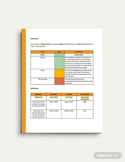 Client Progress Report Template