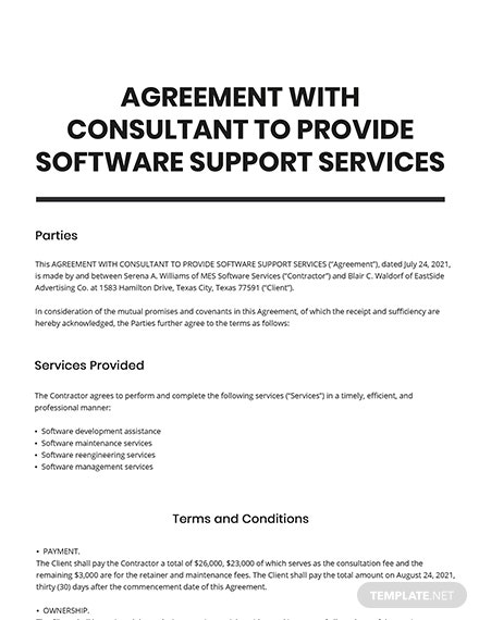 Agreement with Consultant to Provide Software Support Services Template