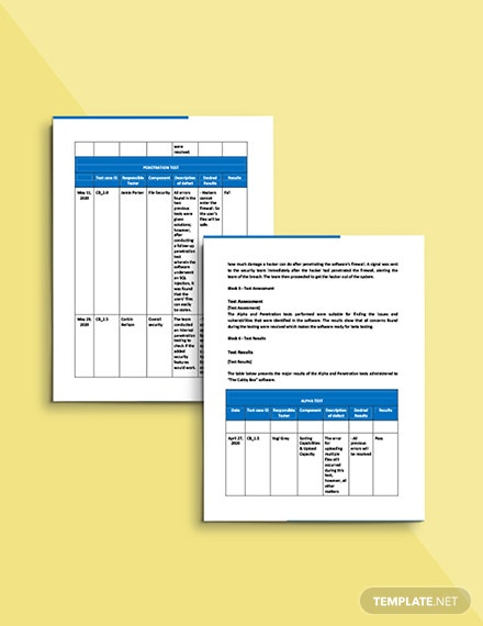 Software Test Report Template sample