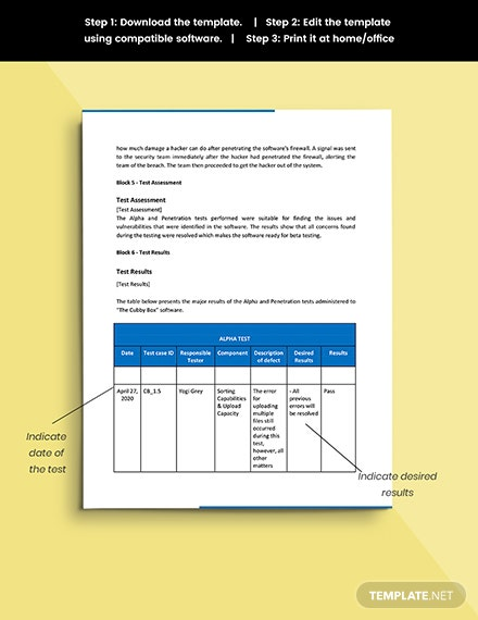 Software Test Report Template snippet