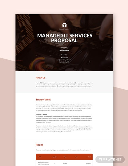 Sample IT Proposal Template