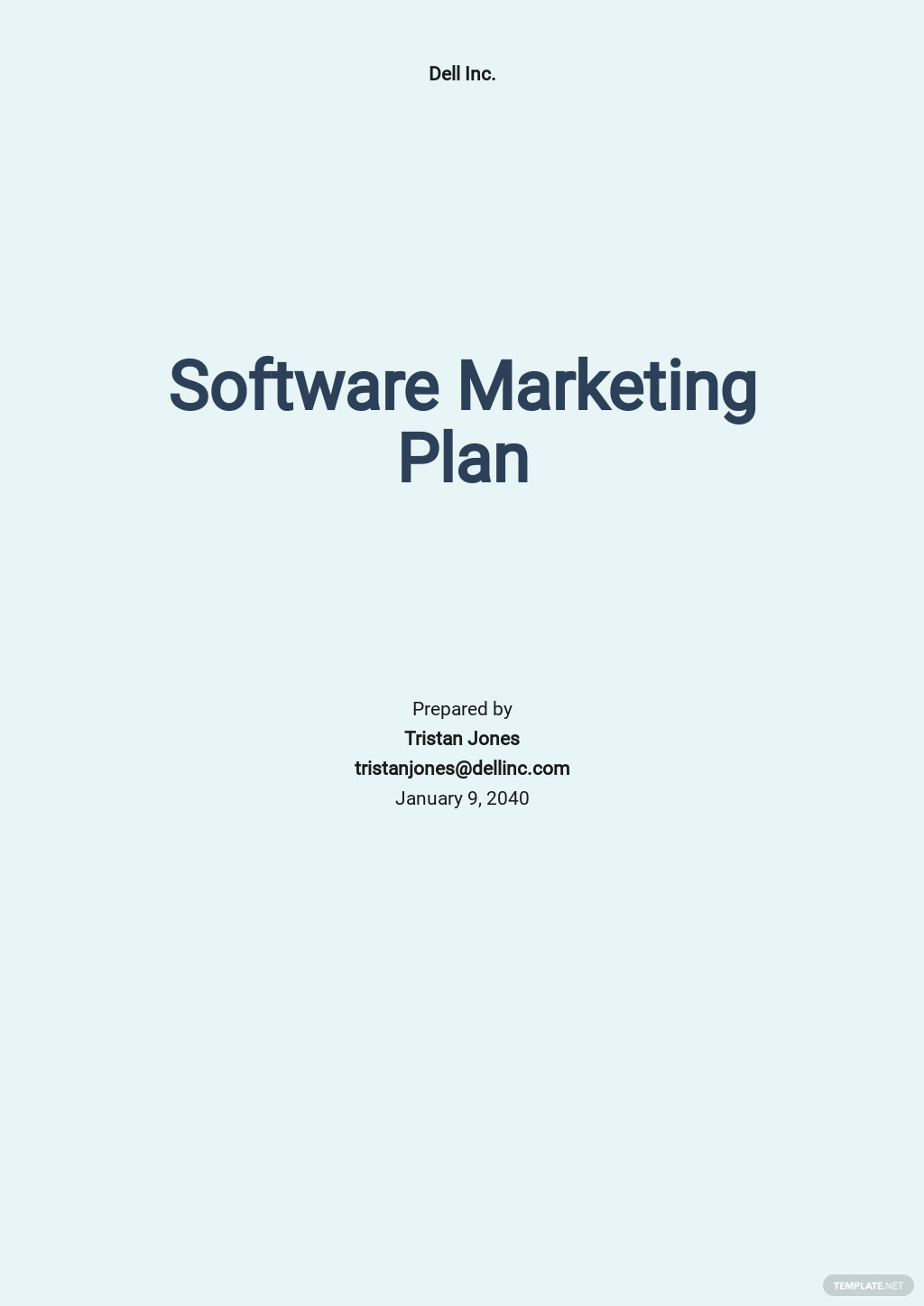 Simple Software Marketing Plan Template