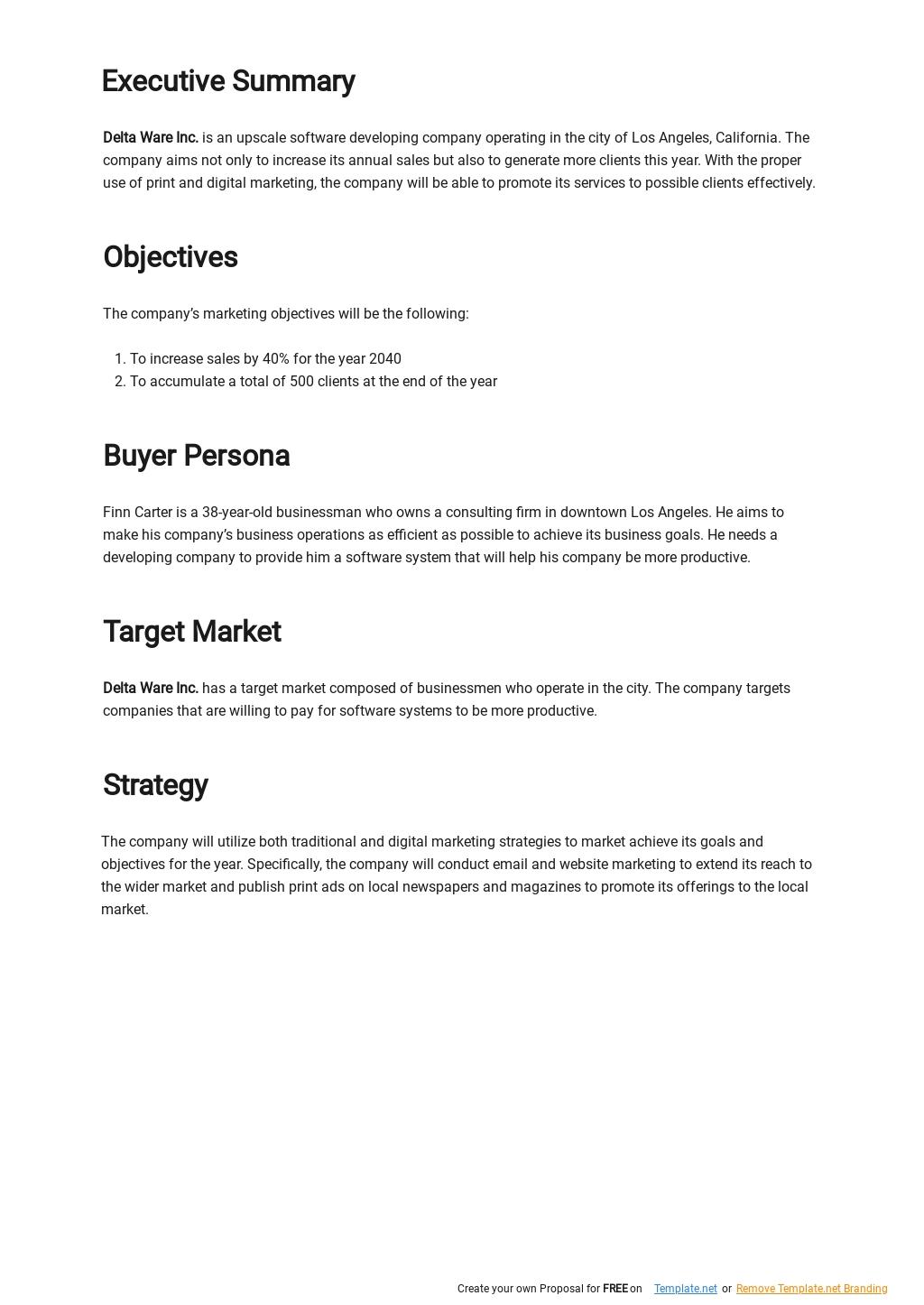 Simple Software Marketing Plan Template 1.jpe