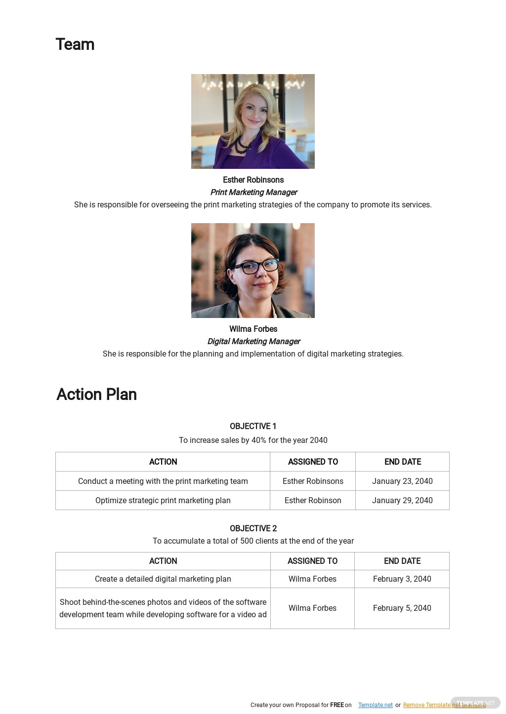 Simple Software Marketing Plan Template 2.jpe