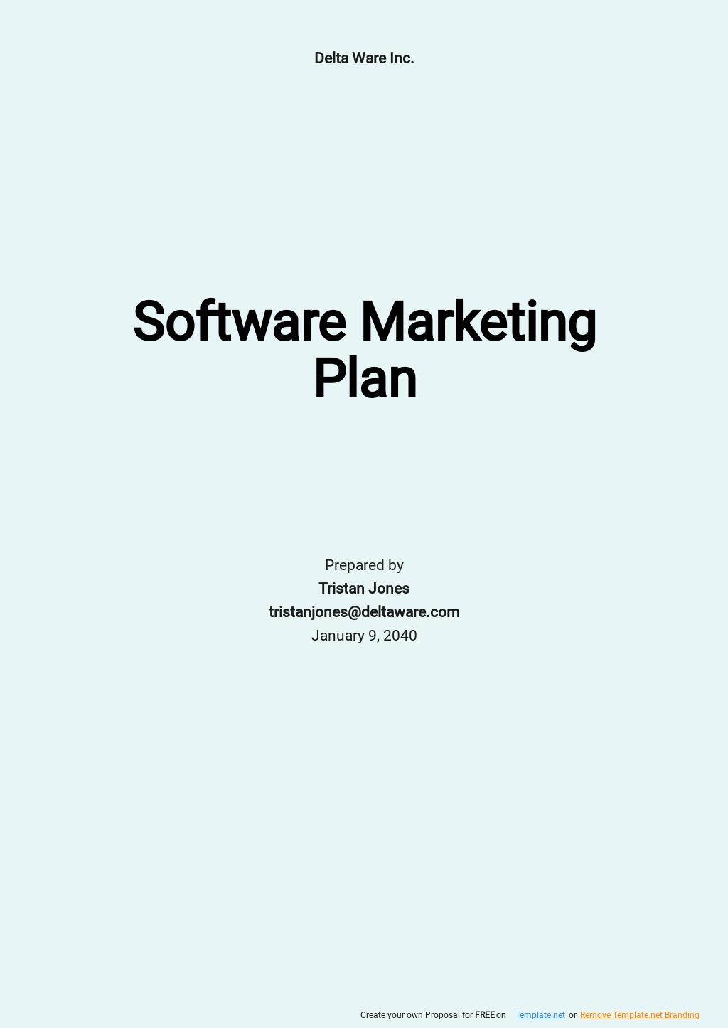 Simple Software Marketing Plan Template.jpe
