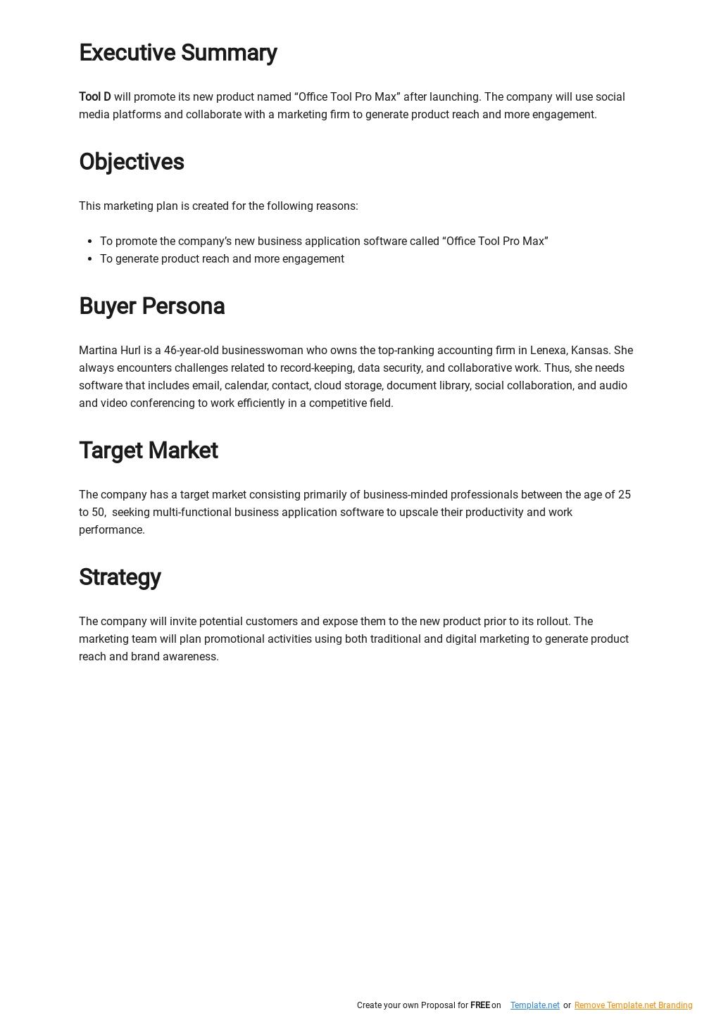 Basic IT Marketing Plan Template 1.jpe