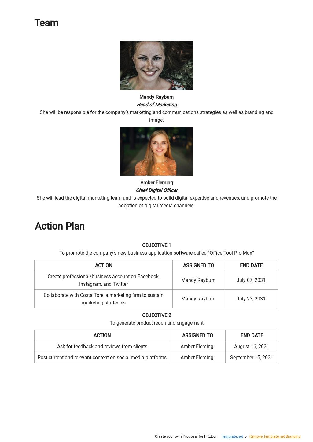 Basic IT Marketing Plan Template 2.jpe