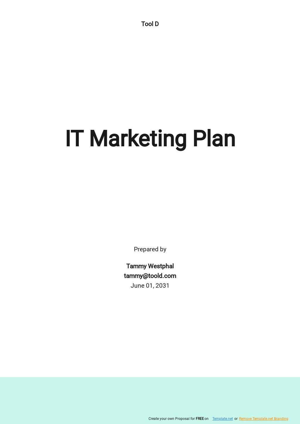Basic IT Marketing Plan Template.jpe
