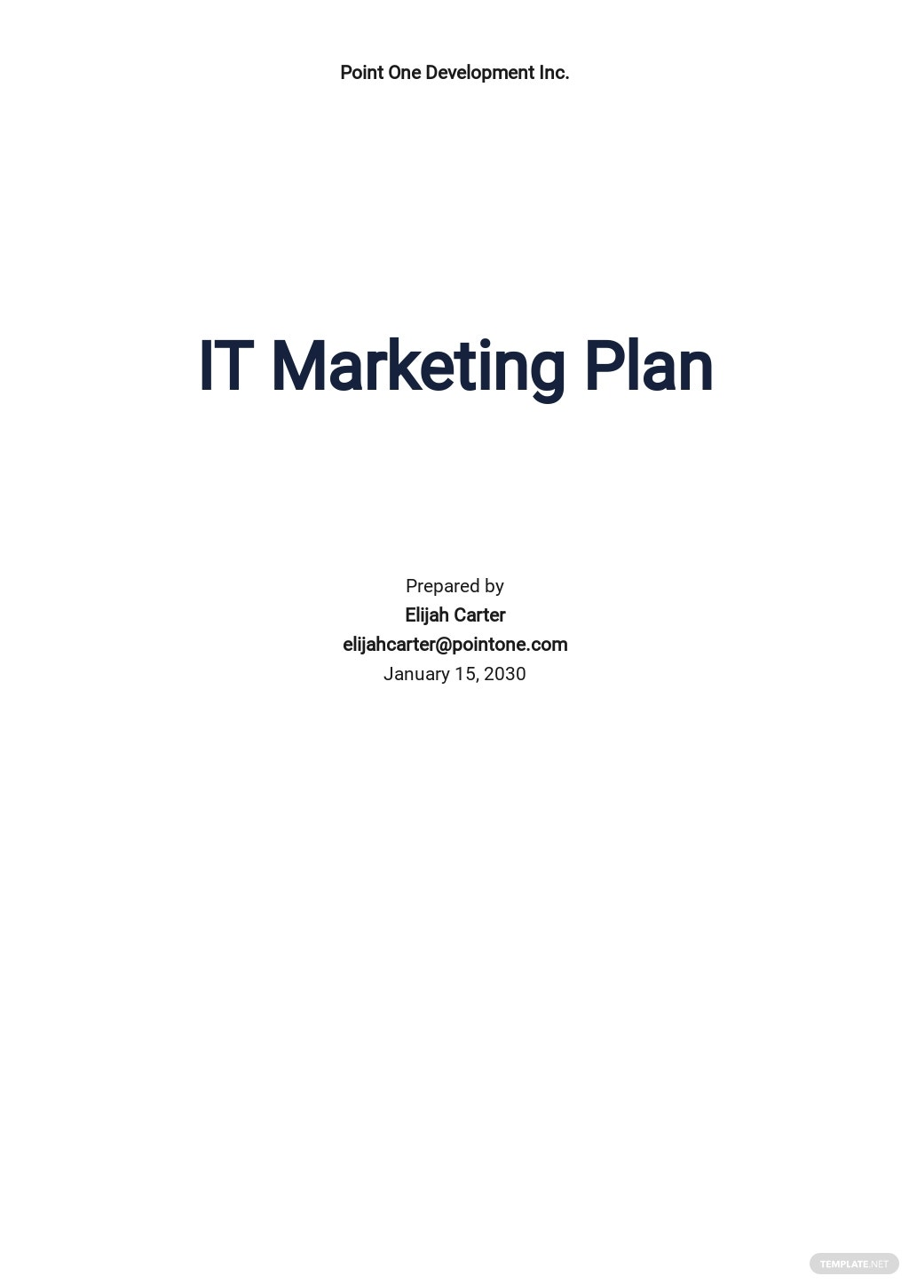 Basic IT Marketing Plan Template