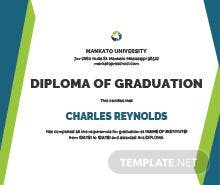 Computer diploma certificate template in psd ms word publisher sample diploma certificate template yelopaper Images