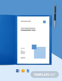 IT Change Management Plan Template