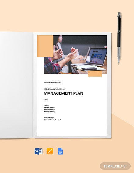 Task Management Plan Template