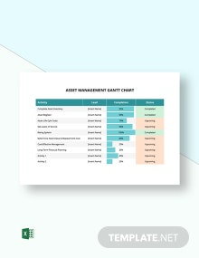 Asset Management Gantt Chart Template