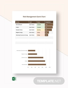 Risk Management Gantt Chart Template