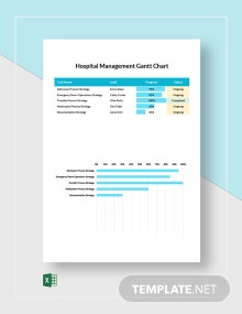 Hospital Management Gantt Chart Template