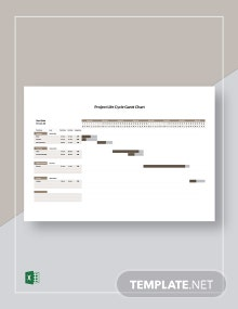 Project Life Cycle Gantt Chart Template