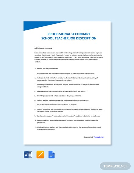 Professional Secondary School Teacher Job Description