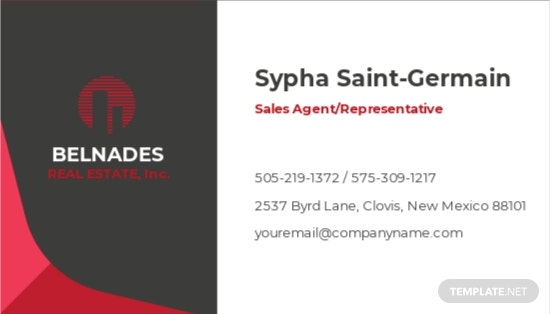 Realty Agency Business Card Template 1.jpe