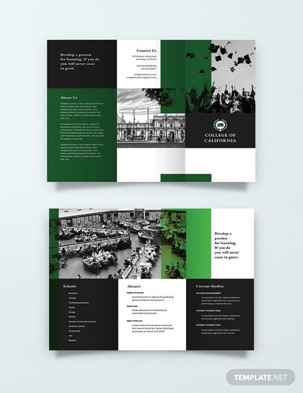 College Brochure | Free Creative College Brochure Template Download 151 Brochures In
