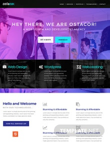 Web Design and Development HTML5/CSS3 Website Template