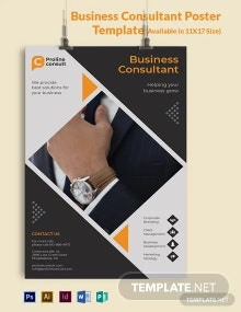Business Consultant Poster Template