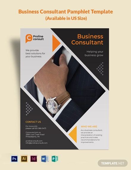 Business Consultant Pamphlet Template