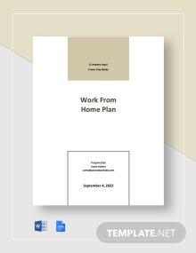 Free Sample Work From Home Plan Template
