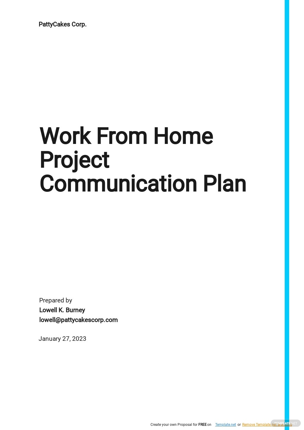 WFH Project Communication Plan Template.jpe