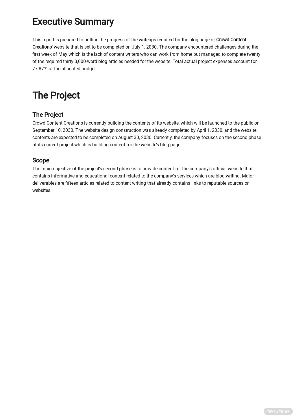 Work From Home Activity Report Template 1.jpe