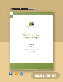 Work From Home Productivity Report Template