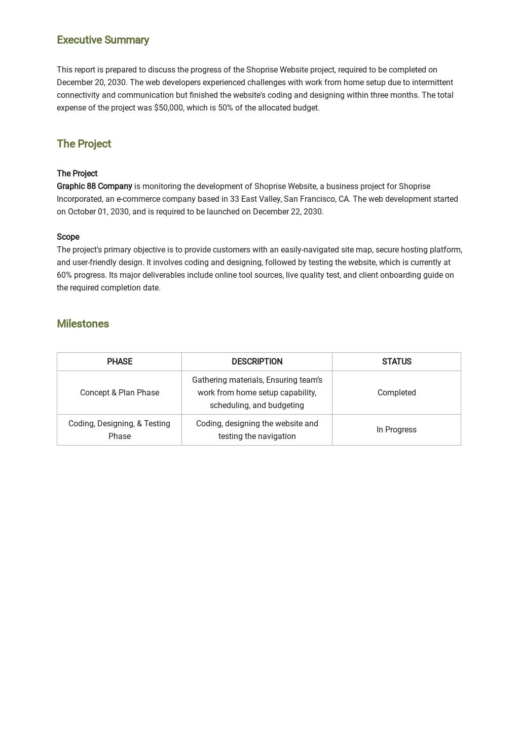 Work From Home Progress Report Template 1.jpe