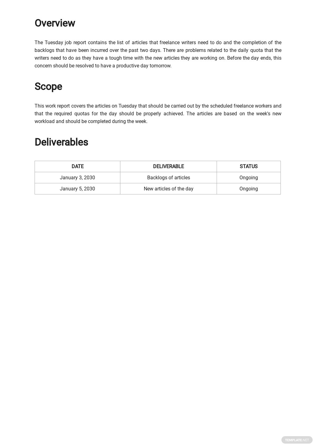 Daily Freelance Work Report Template 1.jpe