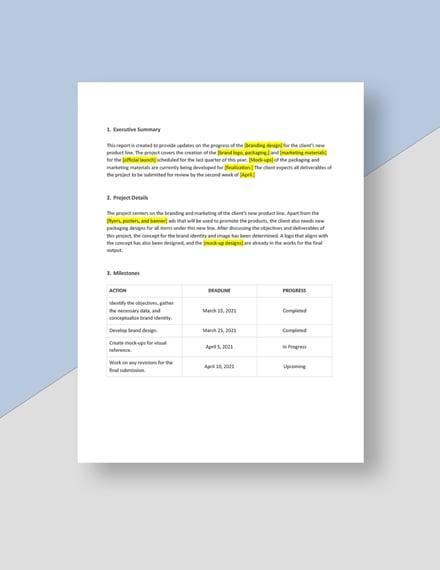 Professional Client Progress Report Download