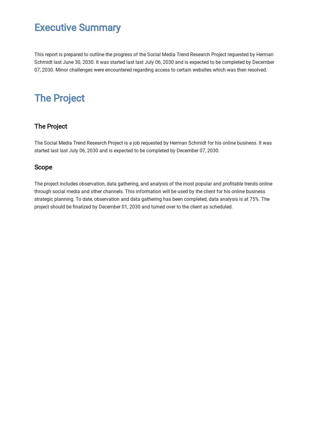 Professional Client Progress Report Template 1.jpe