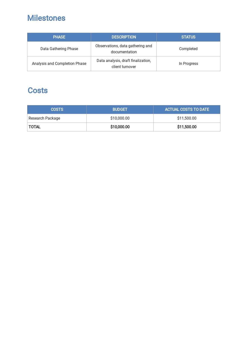 Professional Client Progress Report Template 2.jpe
