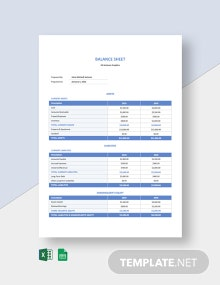 Freelancer Balance Sheet Template